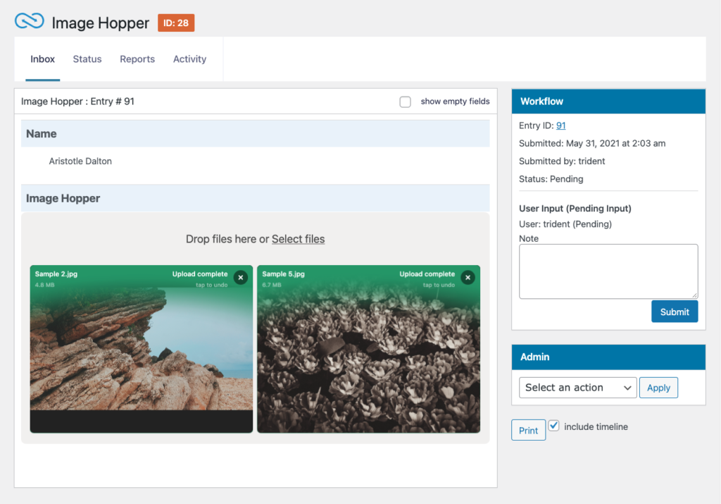Gravity Flow's Inbox showing the User Input Step with an Image Hopper field