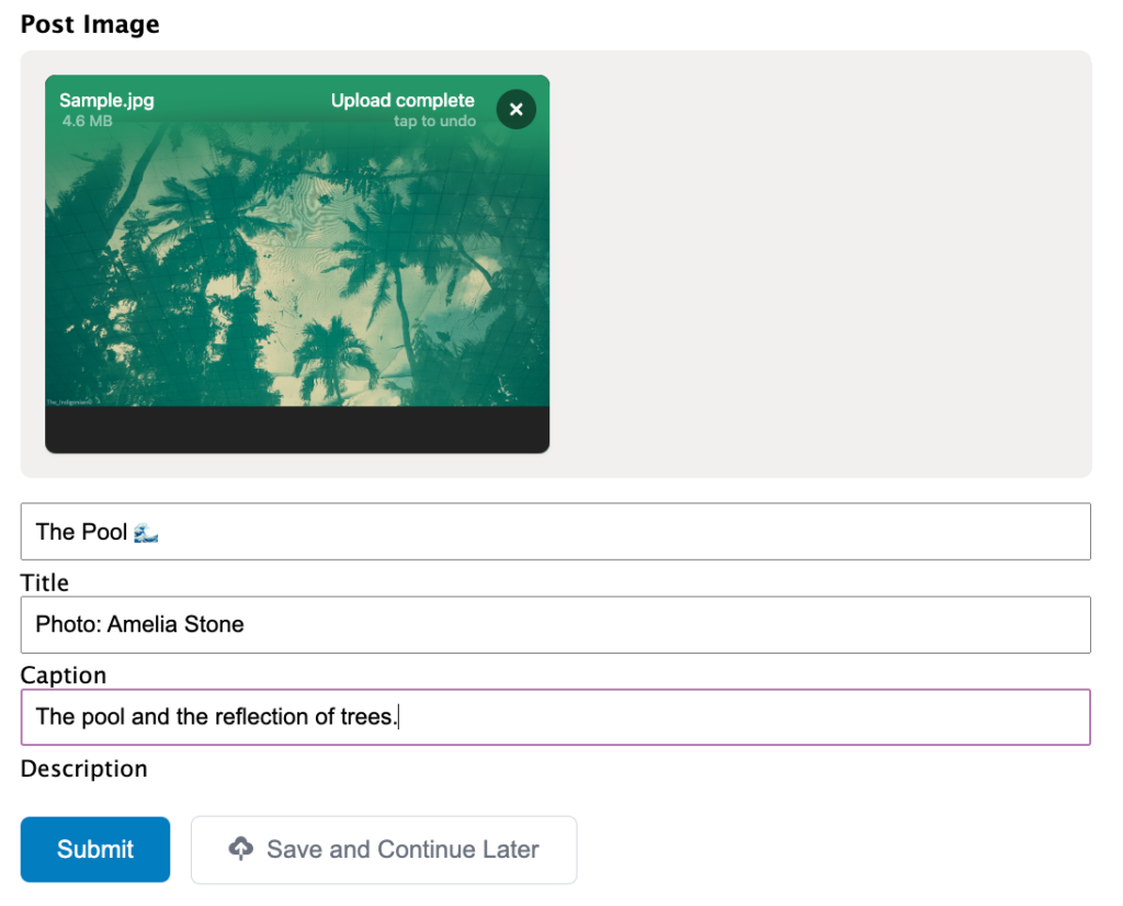 How the end user sees the Image Hopper Post Image field while filling out the form