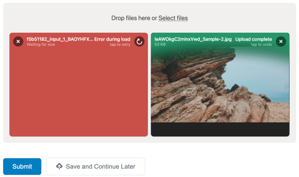 Showing the Image Hopper field in an invalid state after using the Save and Continue feature
