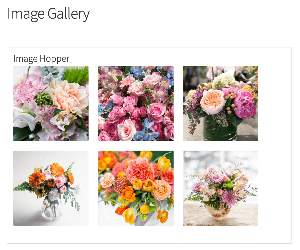 Image Hopper field displayed in GravityView Grid Layout