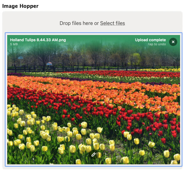 The image uploader with a pencil icon showing to signify the image editor can be activated.